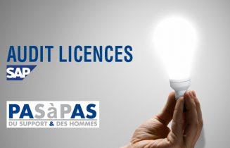 audit licence SAP