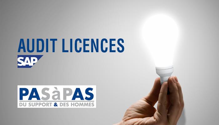 Jeudi 2 juillet à 11h : Audit Licences SAP, comment ça marche ?