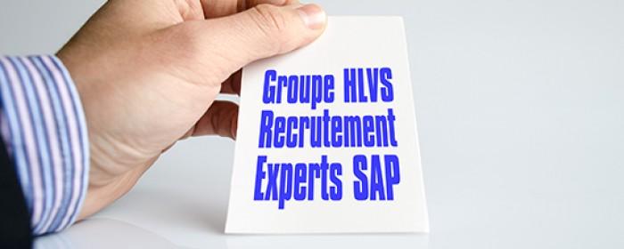 Support SAP : 20 recrutements prévus pour les entités du Groupe HLVS en 2016