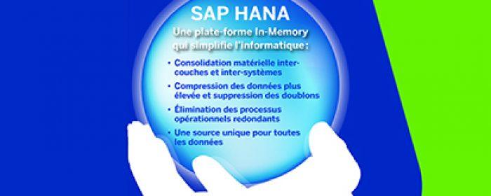 Avantages SAP HANA : une gestion simplifiée et des coûts optimisés
